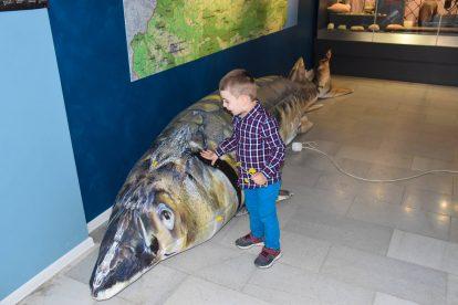 Най-голямата риба улавяна край Дунав